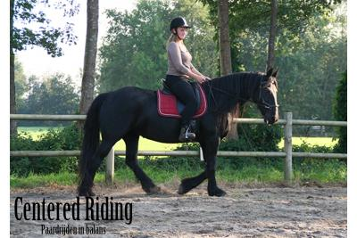Centered riding instructeur