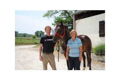 harris-horses-3.jpg