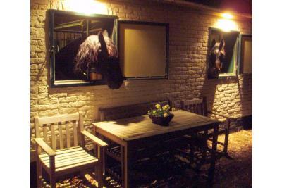 Veld en Bosch: Paardenvakantie en B&B