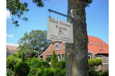 Old horse farm Rusthuis en pensionstal