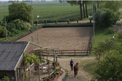 de-paardenmaat-2.jpg