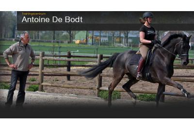 Antoine de Bodt