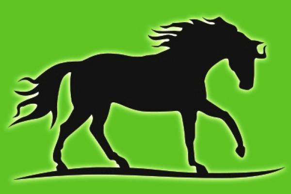 Logootje liggend RAL 6038.jpg