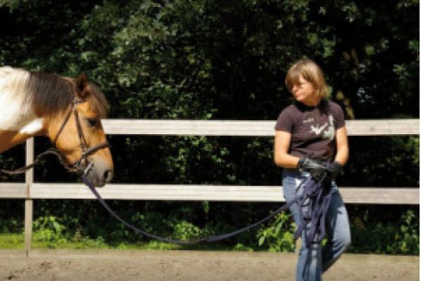 paardenliegenniet_16.jpg
