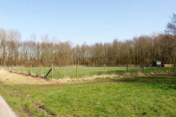 Botterweg_2_Almere_42.jpg