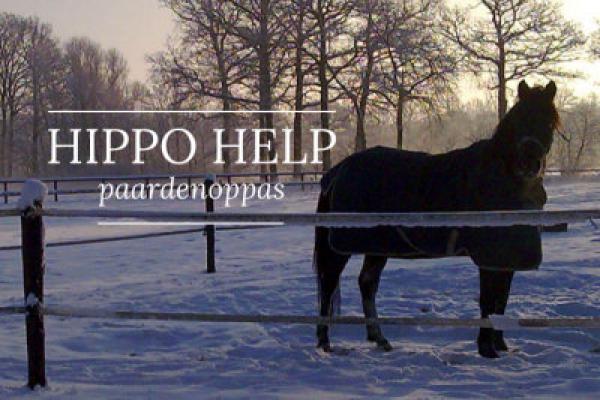 hippo-help-1.jpg